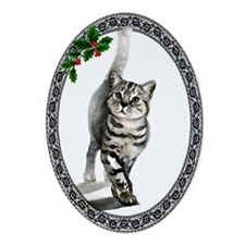 British Shorthair Cat Oval Ornament