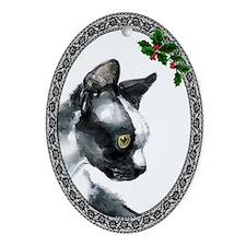 Devon Rex Cat Oval Ornament