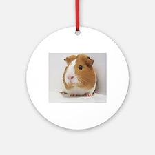 Cute guinea pig Ornament (Round)
