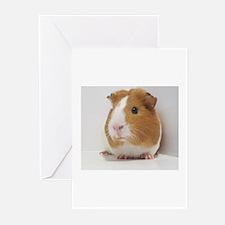 Cute guinea pig Greeting Cards