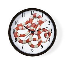 Albino Milksnakes Wall Clock