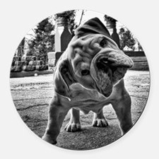 Dudley English Bulldog Round Car Magnet
