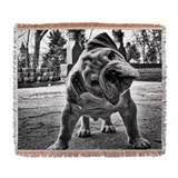 English bulldog puppy Blankets