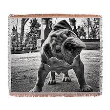 Dudley English Bulldog Woven Blanket