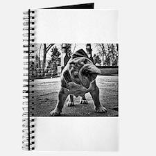 Dudley English Bulldog Journal