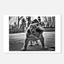 Dudley English Bulldog Postcards (Package of 8)