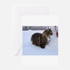 norwegian forest cat in snow Greeting Cards