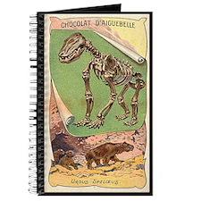 Ursus Speloeus Journal