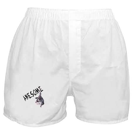 Awesome Possum Boxer Shorts