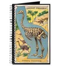 Diornis Giganteus Journal