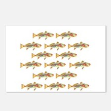 Redfish pattern Postcards (Package of 8)