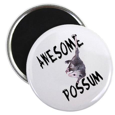 Awesome Possum Magnet