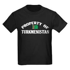 Property Of Turkmenistan T
