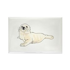 HARP SEAL PUP Magnets