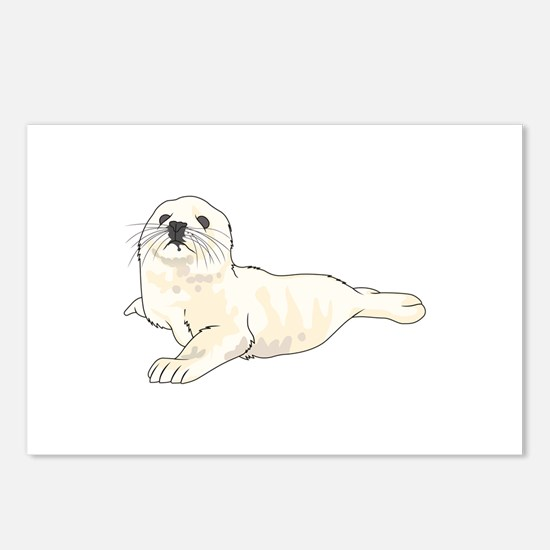 HARP SEAL PUP Postcards (Package of 8)