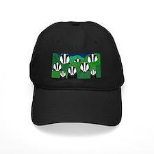 Badger Baseball Hat Baseball Cap