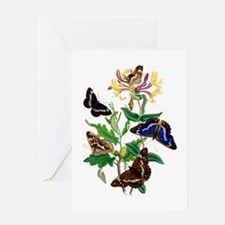 BUTTERFLIES AND HONEYSUCKLE Greeting Card