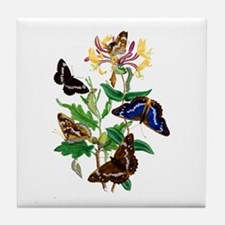 BUTTERFLIES AND HONEYSUCKLE Tile Coaster