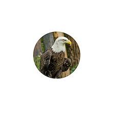 Bald Eagle Looking Mini Button