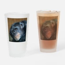 Chimpanzee 0115 Drinking Glass