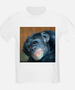 Chimpanzee 0115 T-Shirt