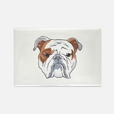 ENGLISH BULLDOG HEAD Magnets
