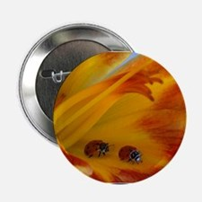 "Good evening ladies 2.25"" Button (10 pack)"
