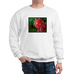 Rasberry Sweatshirt