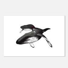 HUMPBACK WHALES Postcards (Package of 8)
