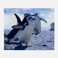 Cute Penguins Throw Blanket