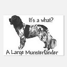 Munsterlander Postcards (Package of 8)