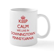 Keep calm we live in Downingtown Pennsylvania Mugs