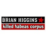 Brian Higgins for Congress Bumper Sticker