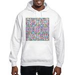 Pastel Bursts 1 Hooded Sweatshirt