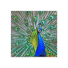 """1599-Peacock Square Sticker 3"""" x 3"""""""