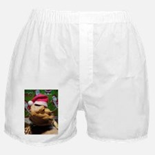 Beardie Santa Hat Boxer Shorts