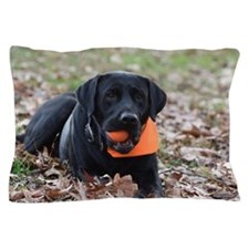 Fall Fetch Pillow Case