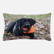 Fall Fetch Pillow Case