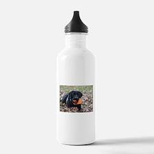 Fall Fetch Water Bottle