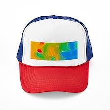 Funny Transparent Trucker Hat