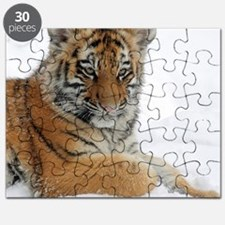Funny Tiger Puzzle