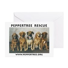 dogsforcafe Greeting Cards