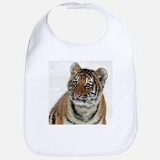 Tiger_2015_0108 Bib