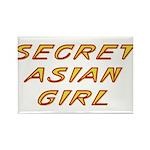 Secret Asian Girl Rectangle Magnet