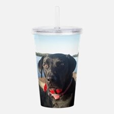 Abby 2011 Acrylic Double-wall Tumbler