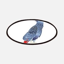 African Grey Parrot Patches