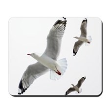 3 Gulls in Flight copy Mousepad