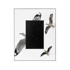 3 Gulls in Flight copy Picture Frame