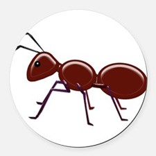 Shiny Brown Ant Round Car Magnet