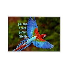 Parrot Teacher Magnets